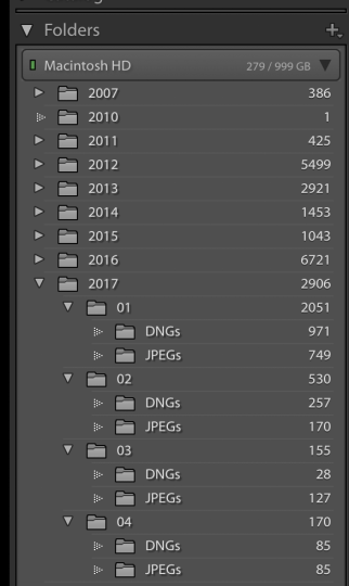 Folder structure as seen in Lightroom organized by year, month, file type